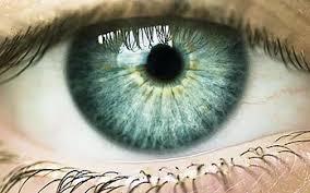 iridologie normandie
