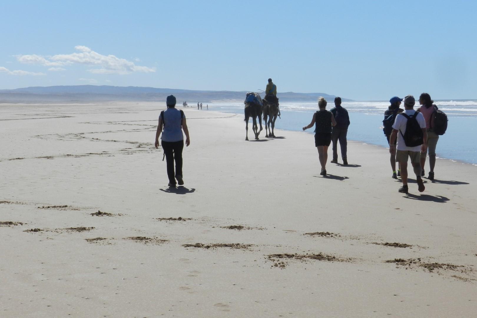 plage d'Essaouira jeûne Céline FORTIN Naturopathe