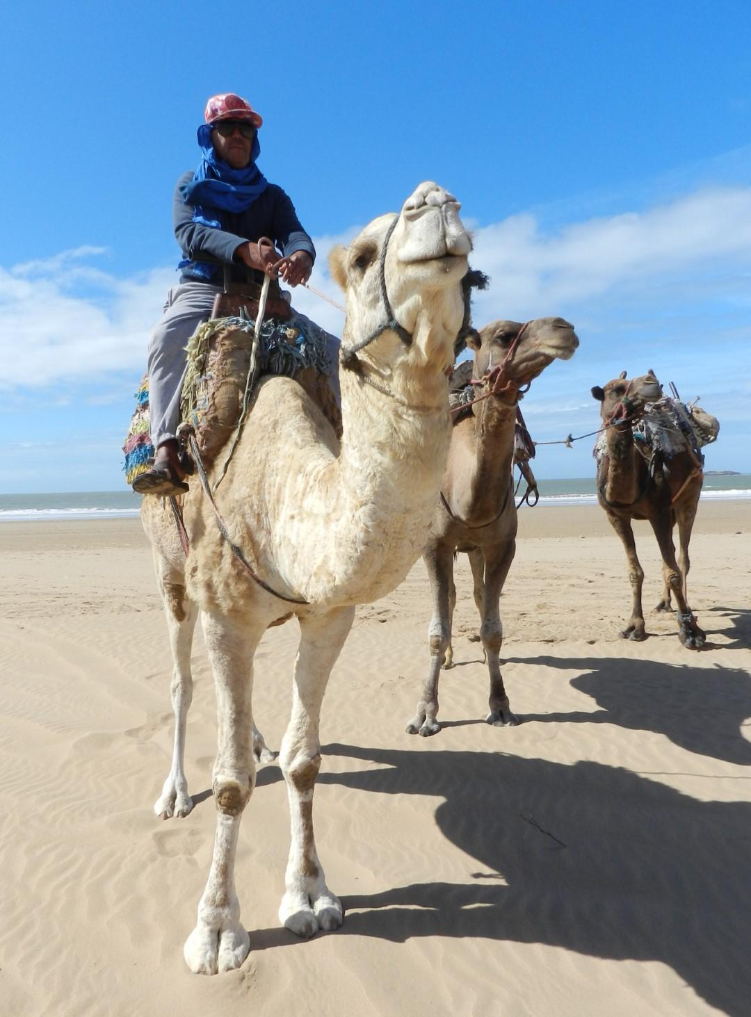 stage de jeûne Essaouira plage